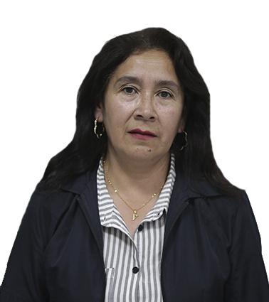 Violeta Torres Figueroa – Doc. de Enfermería – Fac. Ciencias de la Salud